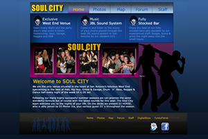 Website Design Website Development - Soul City Project